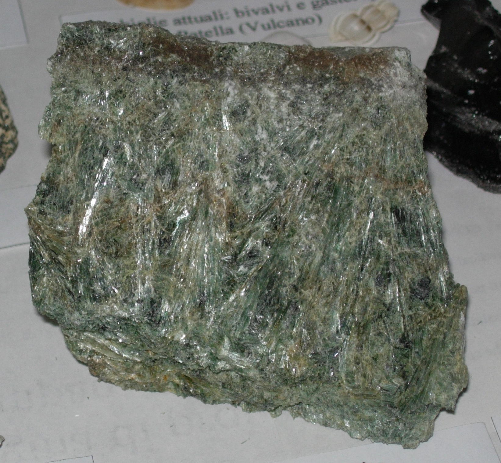 Actinolite Schist | www.pixshark.com - Images Galleries ...